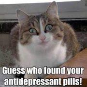 menopause signs, menopause symptoms